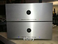 Nelson Pass V1.6 ACA amp. Brand new, fully assembled
